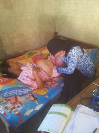 Kader Posyandu Desa Pulosari  Perkuat Program Pendampingan Bumil Risti