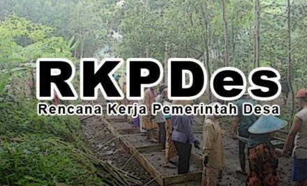 RKPDes 2019